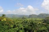 paysage jungle cubaine