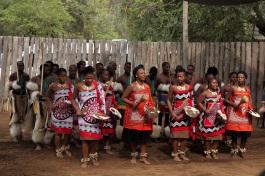 Danseurs traditionnels swazis