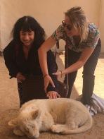 Ophélie aidant Marie-Claude à caresser le lionceau blanc