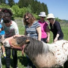 découverte d'une exploitation agricole familiale. Claudine, Armelle, Ioana, Mireille et Josette… et un petit poney !